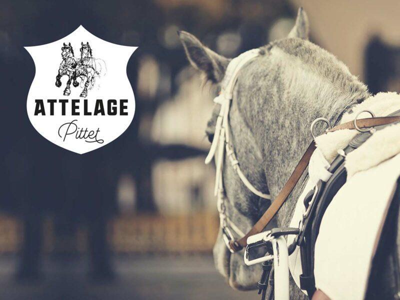 Création du logo et de la charte graphique de l'entreprise Pittet Attelage