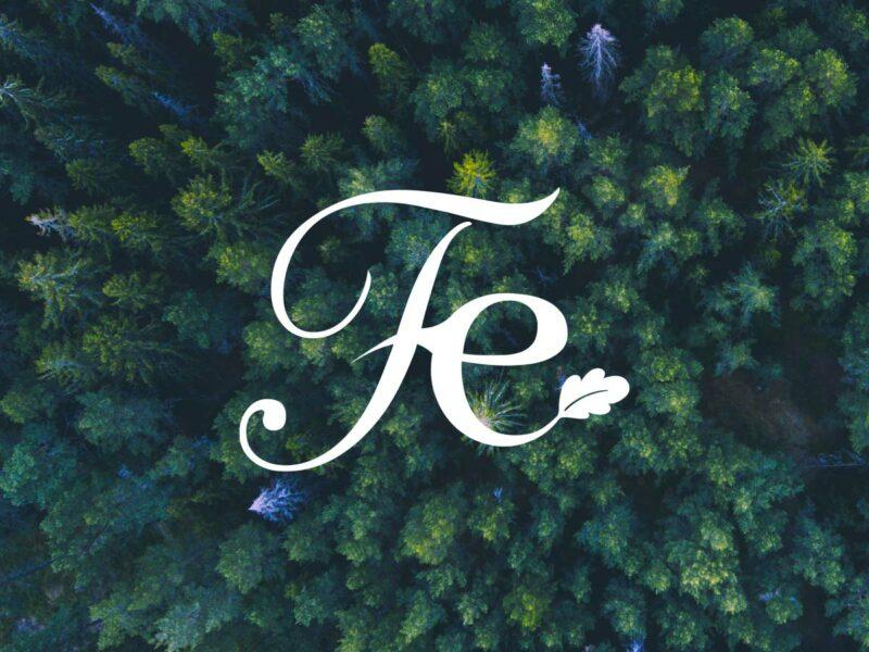 Graphiste Nyon création logo Forest Ethik