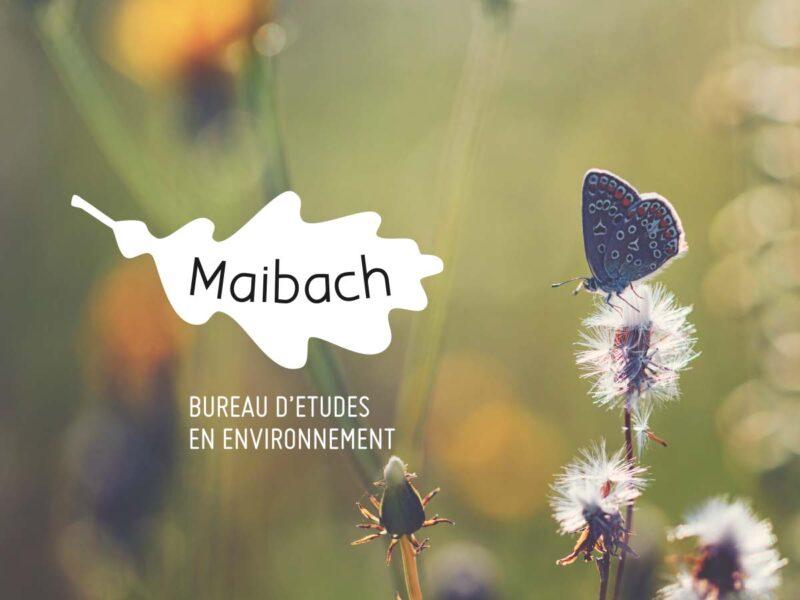 Refonte du logo du bureau d'études en environnement A. Maibach Sàrl à Oron-la-Ville